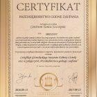 Kurs tańca - certyfikat